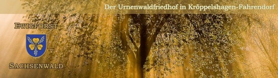 Ewigforst Sachsenwald